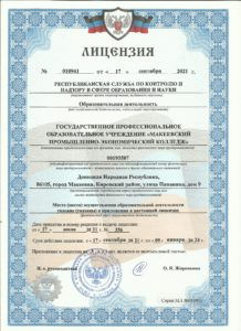 Лицензия 2021 год